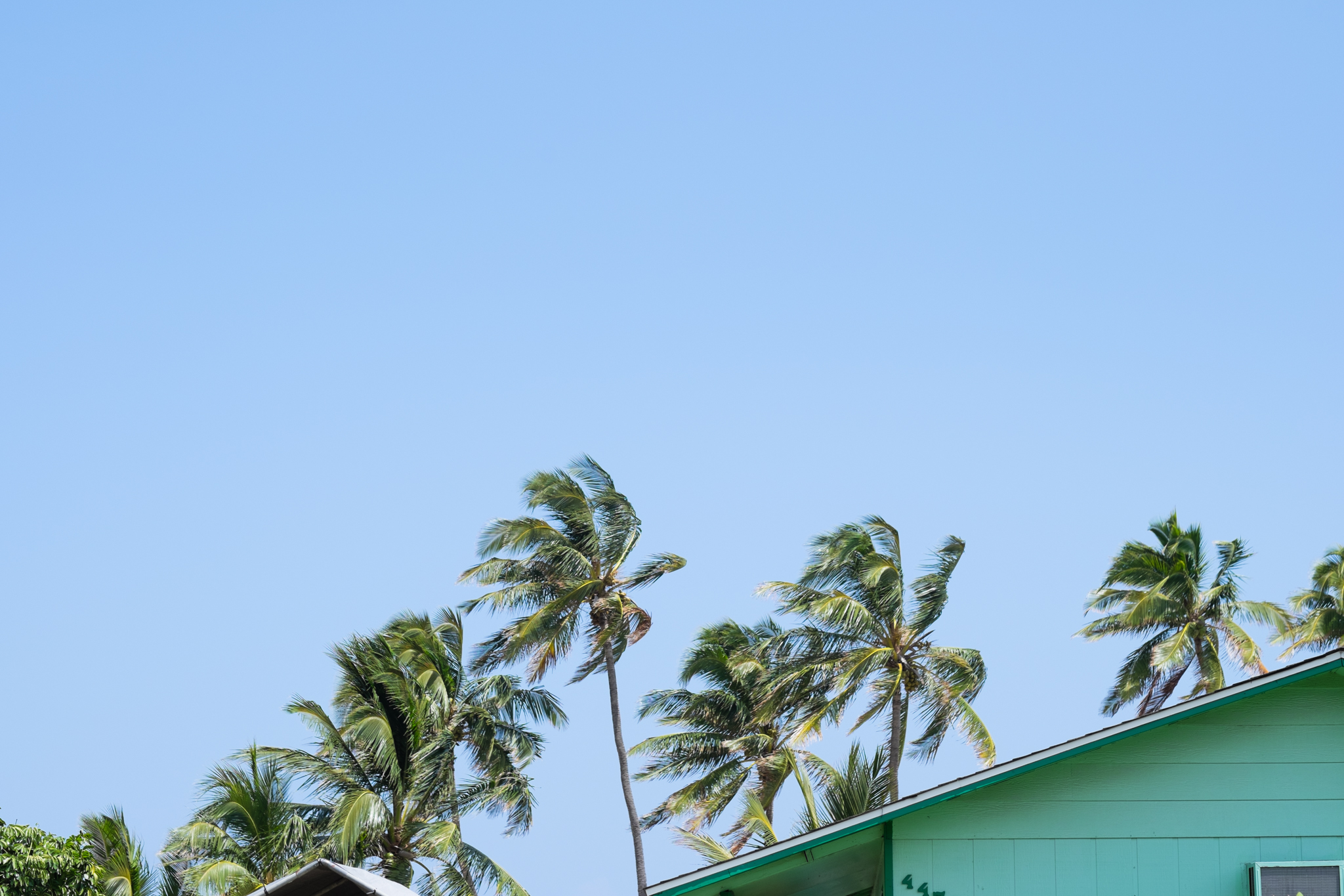 Kauai-225 - Copy.jpg