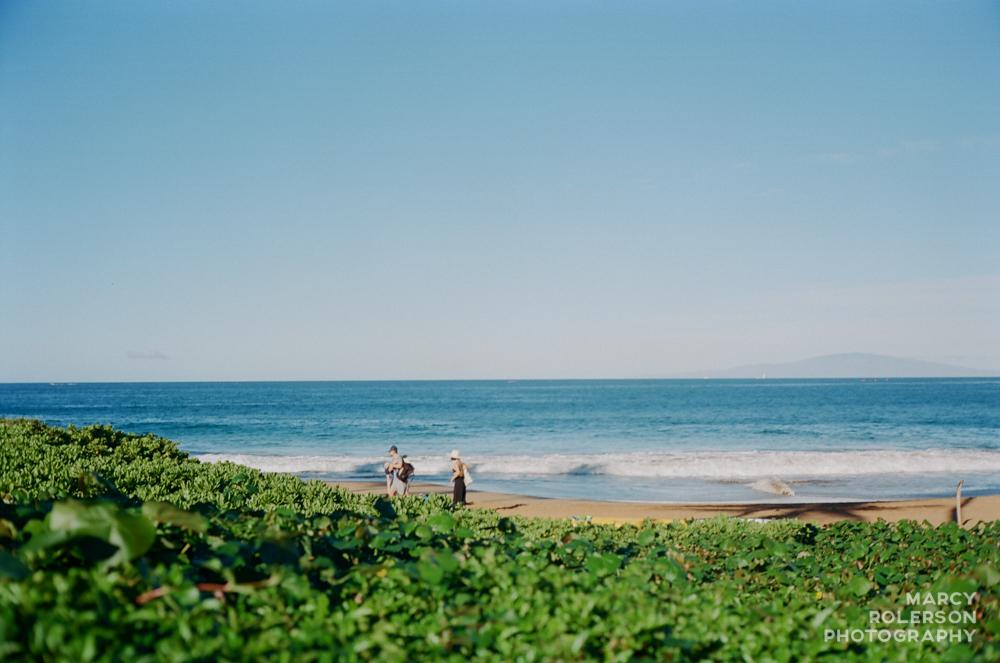 Hawaii_Maui_Paia-42.jpg