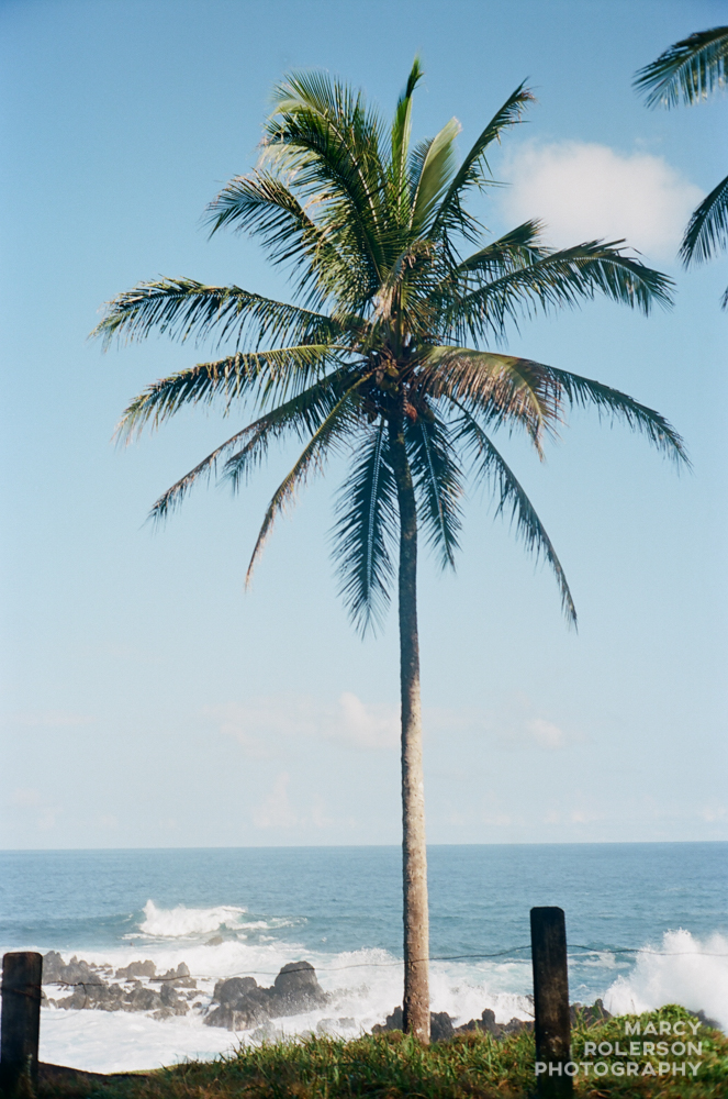 Hawaii_Maui_Paia-77.jpg