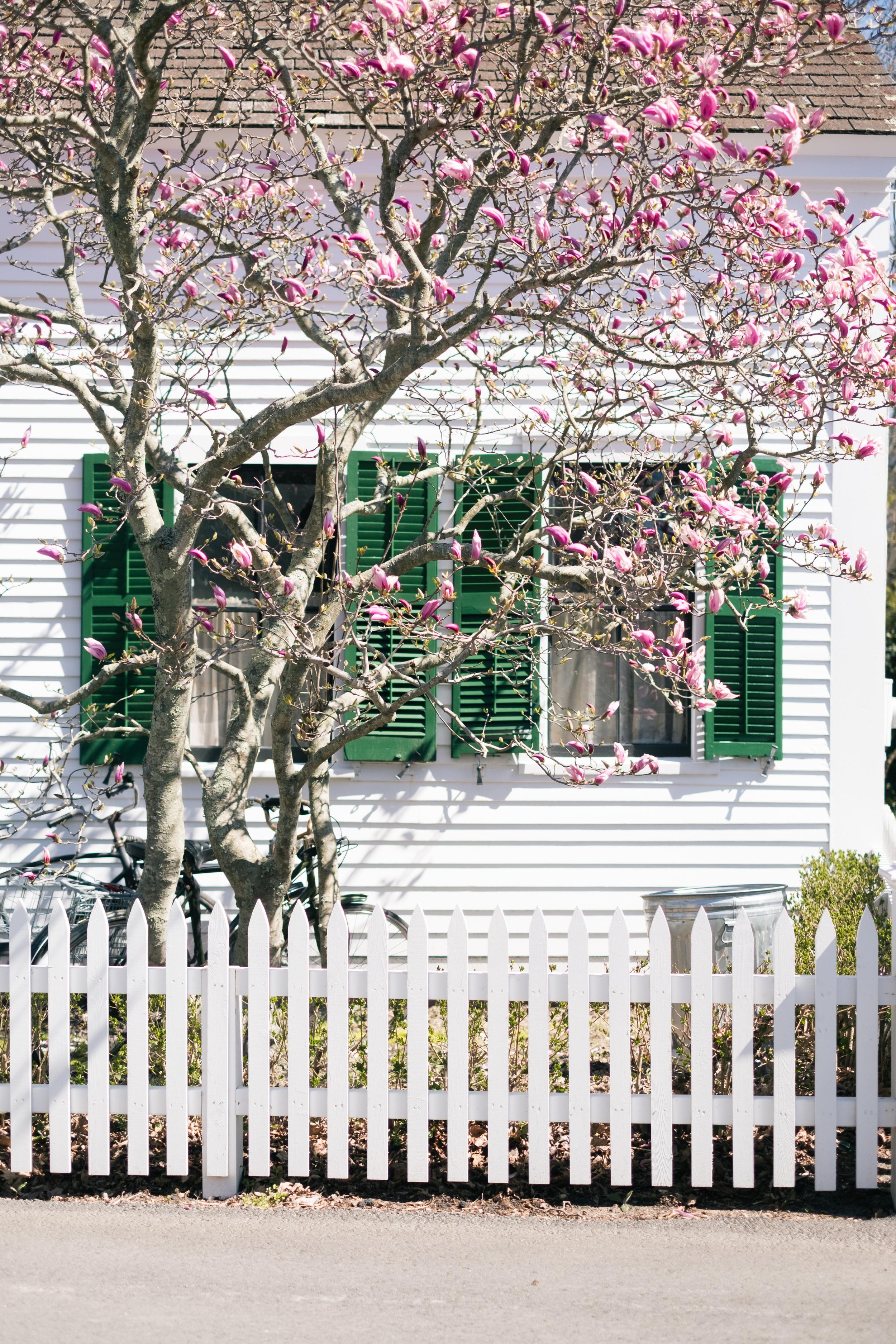 Provincetown-2.jpg