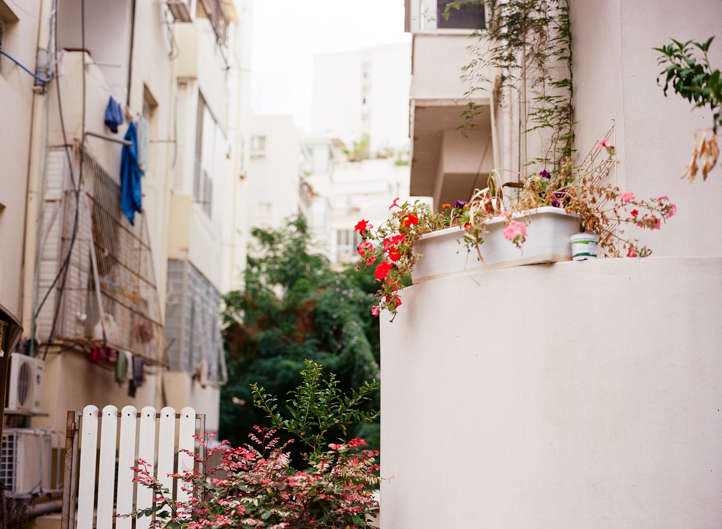 Tel Aviv-150.jpg