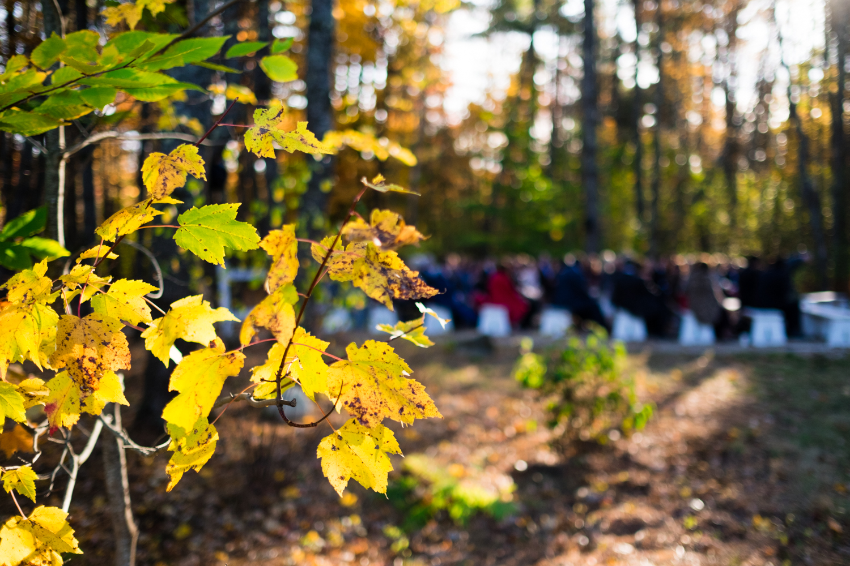 Kim_Andrew_Flanagan_Farm_Maine_Wedding-43.jpg