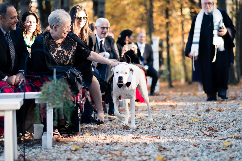 Kim_Andrew_Flanagan_Farm_Maine_Wedding-44.jpg
