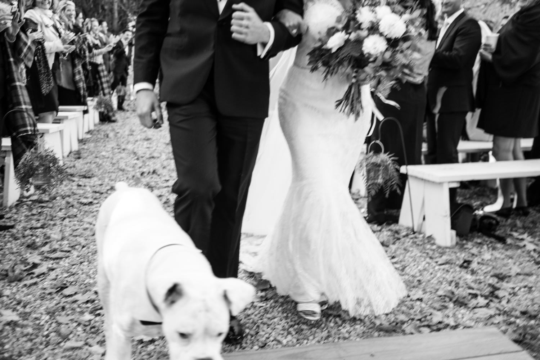 Kim_Andrew_Flanagan_Farm_Maine_Wedding-50.jpg