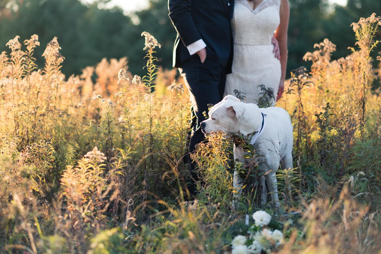 Kim_Andrew_Flanagan_Farm_Maine_Wedding-60.jpg