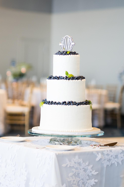 Alia_Ryan_Cliff_House_Maine_Wedding-51.jpg