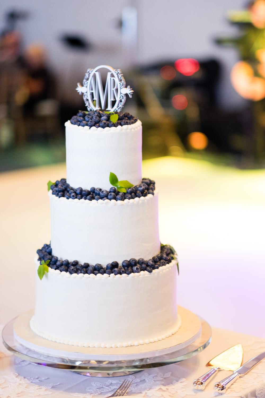 Alia_Ryan_Cliff_House_Maine_Wedding-65.jpg