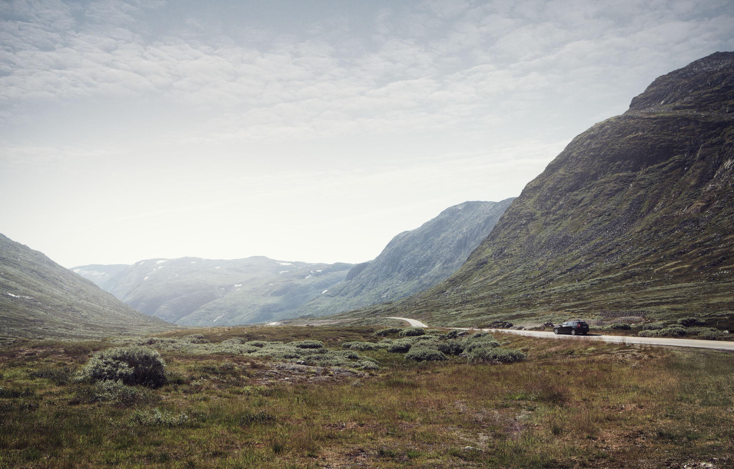 Bergen-6554_C_Final.jpg
