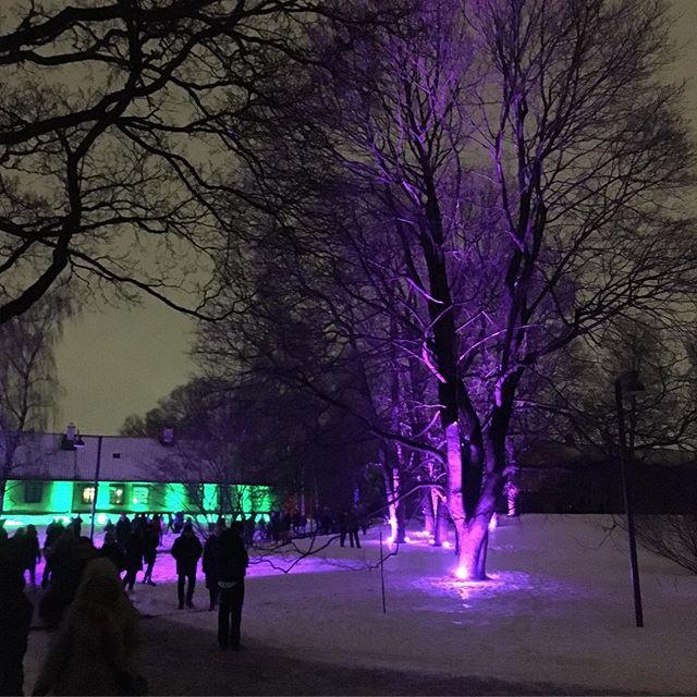 Lysvandring i Botanisk hage i kveld 💜 Glimt fra 2018 . . . #tonight #lysvitenskap #UiO  #science of #light 💜 #lighting #vsco #botanicalgarden #oslo 💜 #naturhistoriskmuseum  ENJOY!