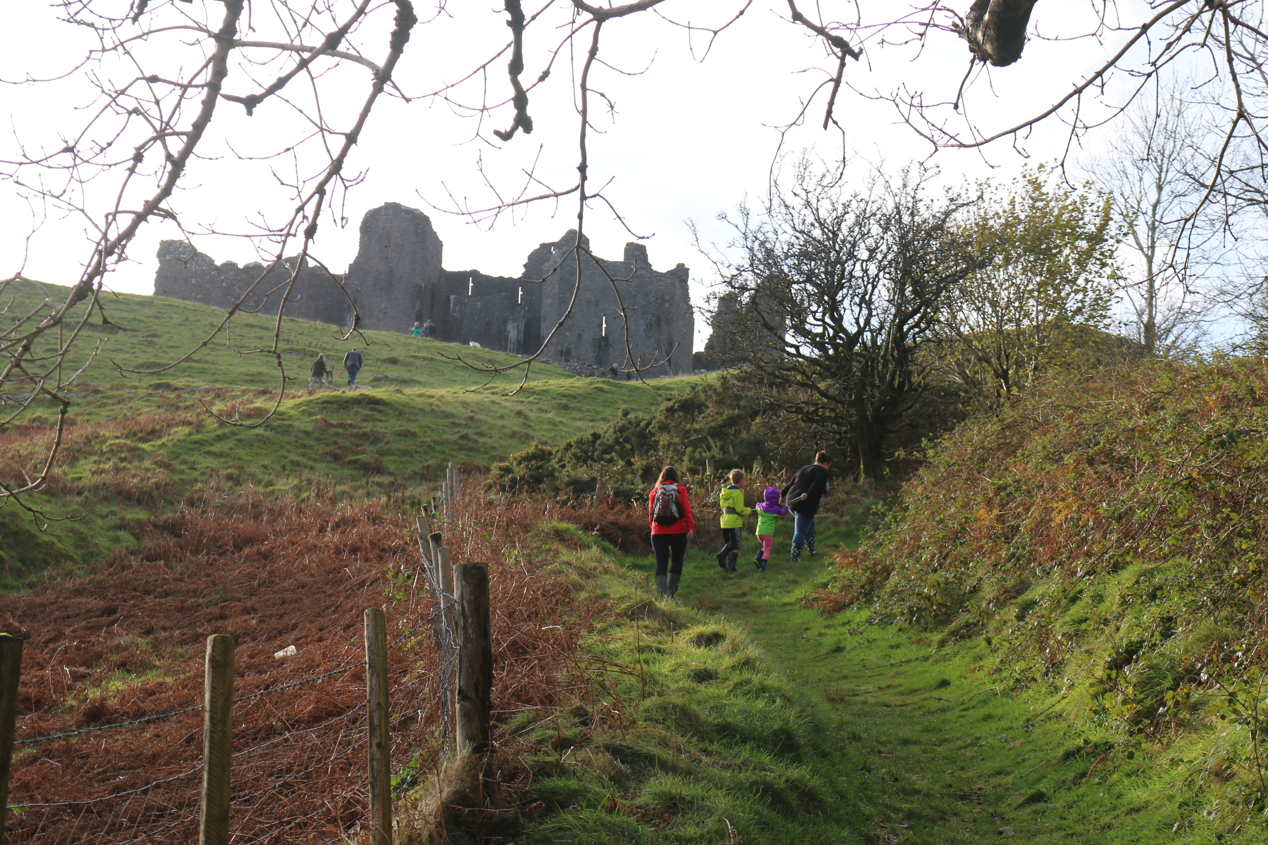Carreg Cennen Castle: the hike up.