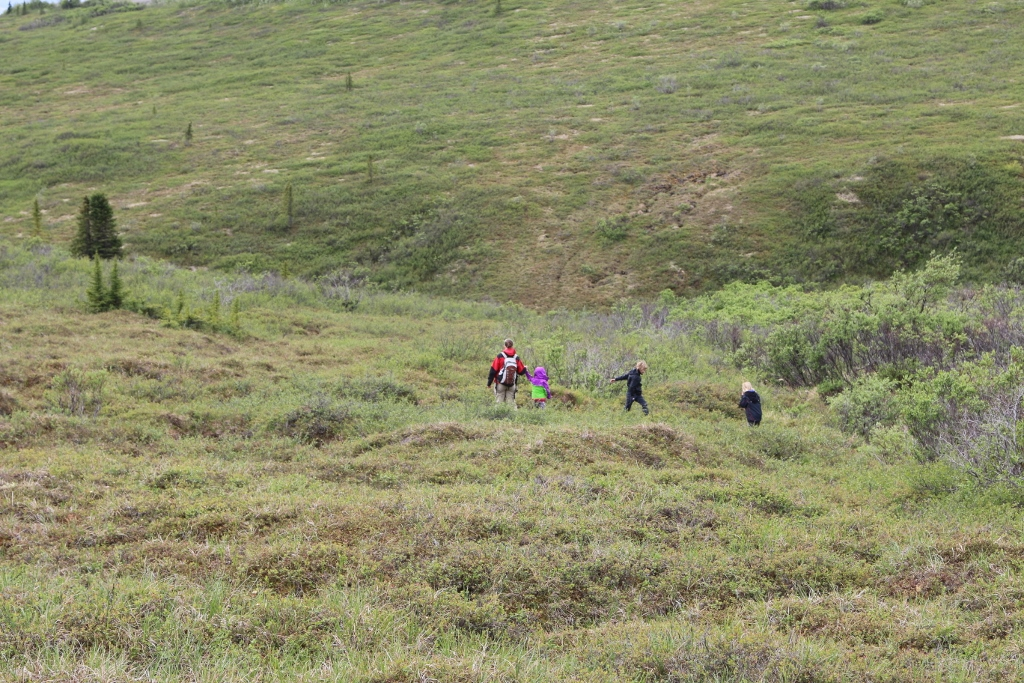 A hike across the Tundra - near Primrose Viewpoint