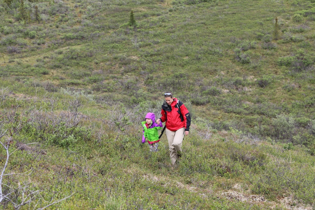 On the squishy tundra