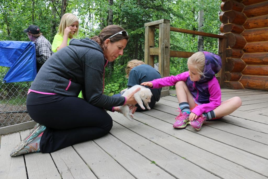 Iditarod HQ: petting the puppies