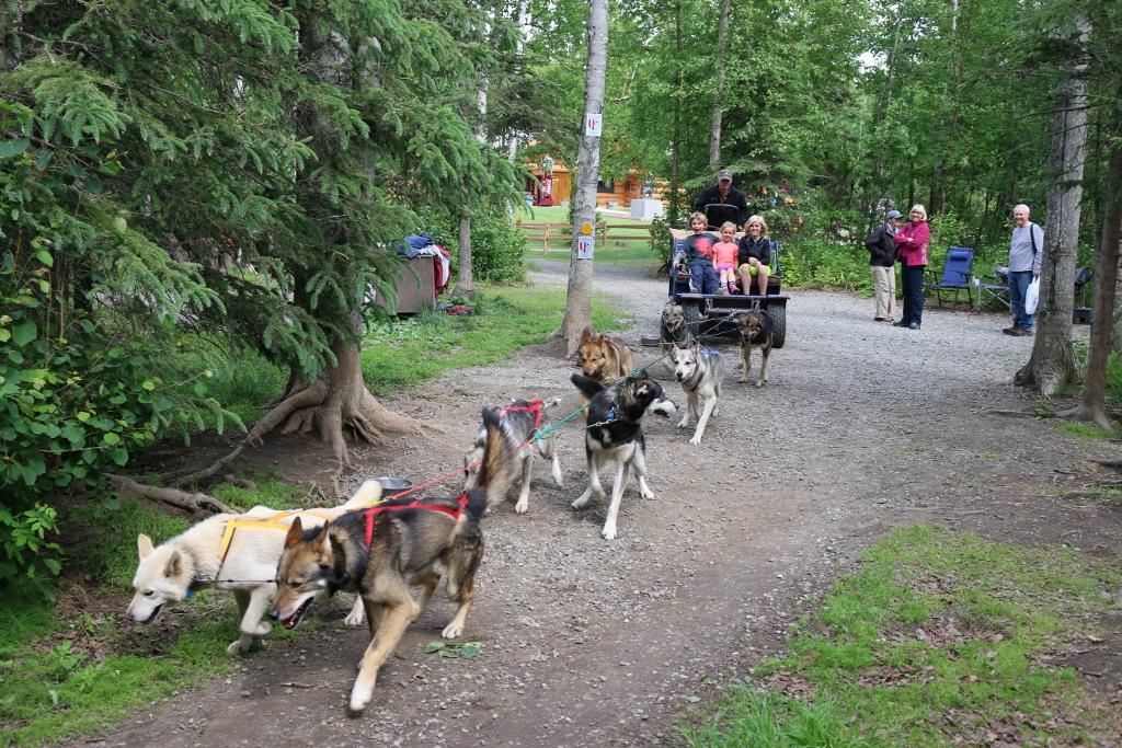 "Wasilla: A ""sled"" ride at Iditarod Headquarters"