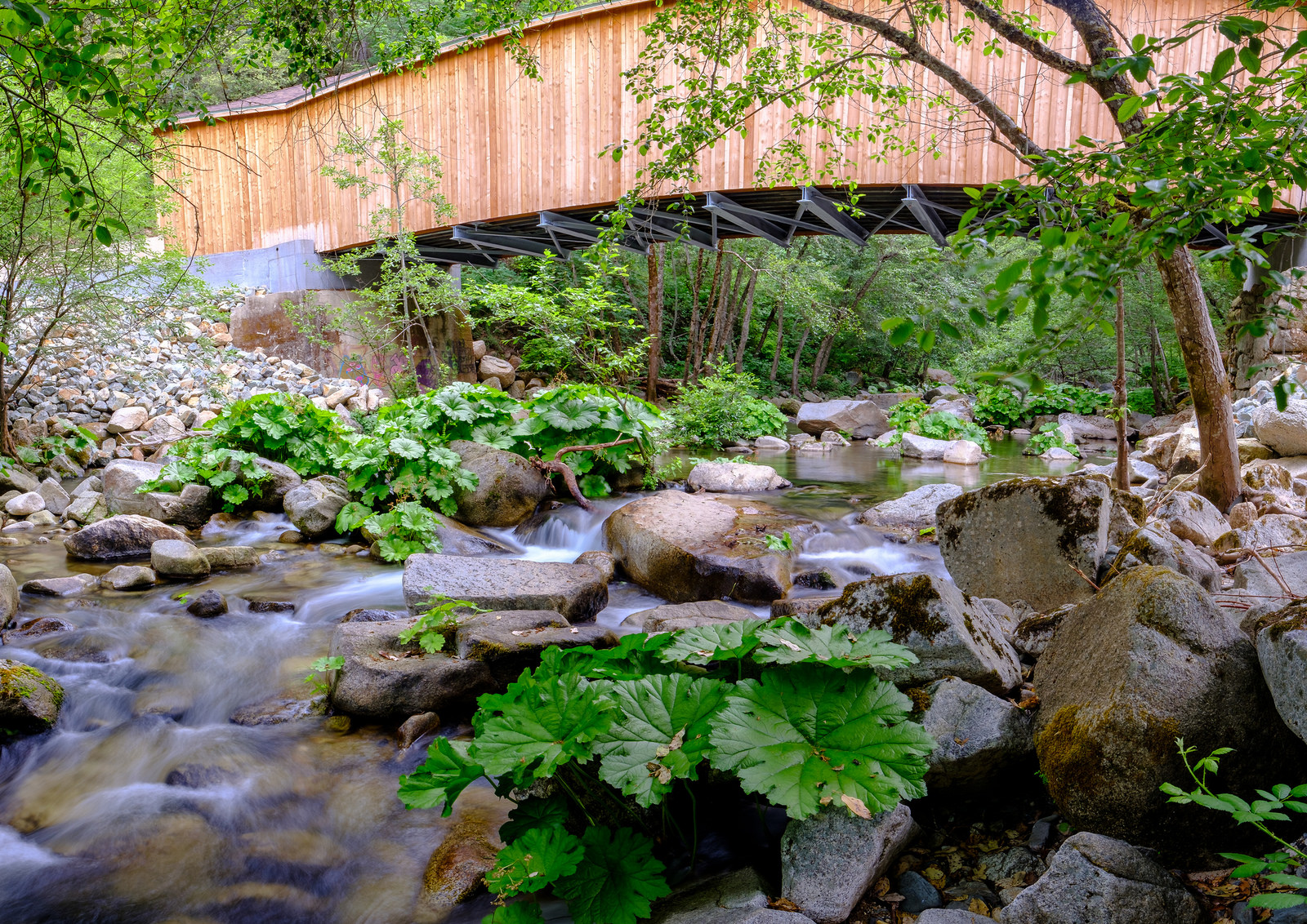 This is a panorama made up of 5 images. Because my tripod wasn't totally level, you can see a little distortion in the bridge shape.