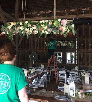 "Four members of our staff teamed up to install the ""chandeliers"""