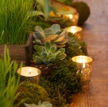 centerpiece-natural-candle-votive