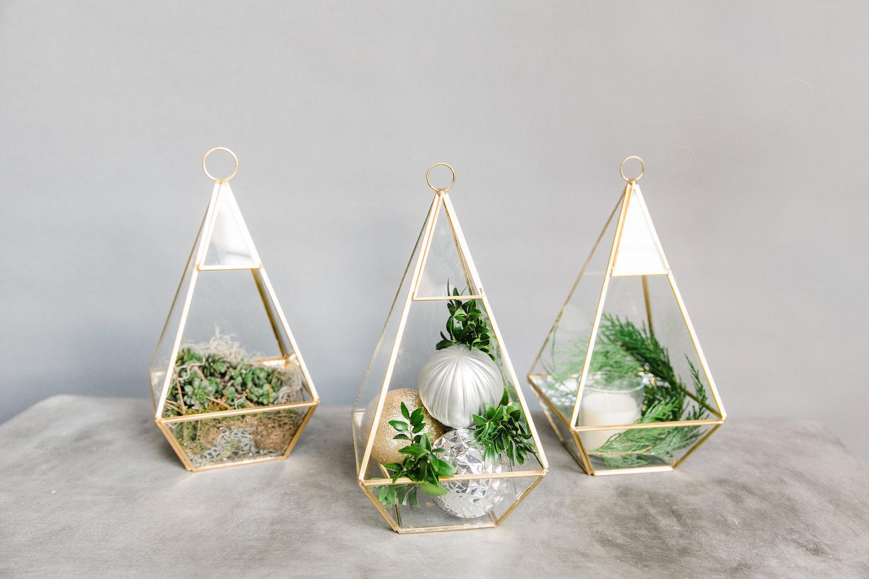 Holiday-Gold-terrarium.jpg