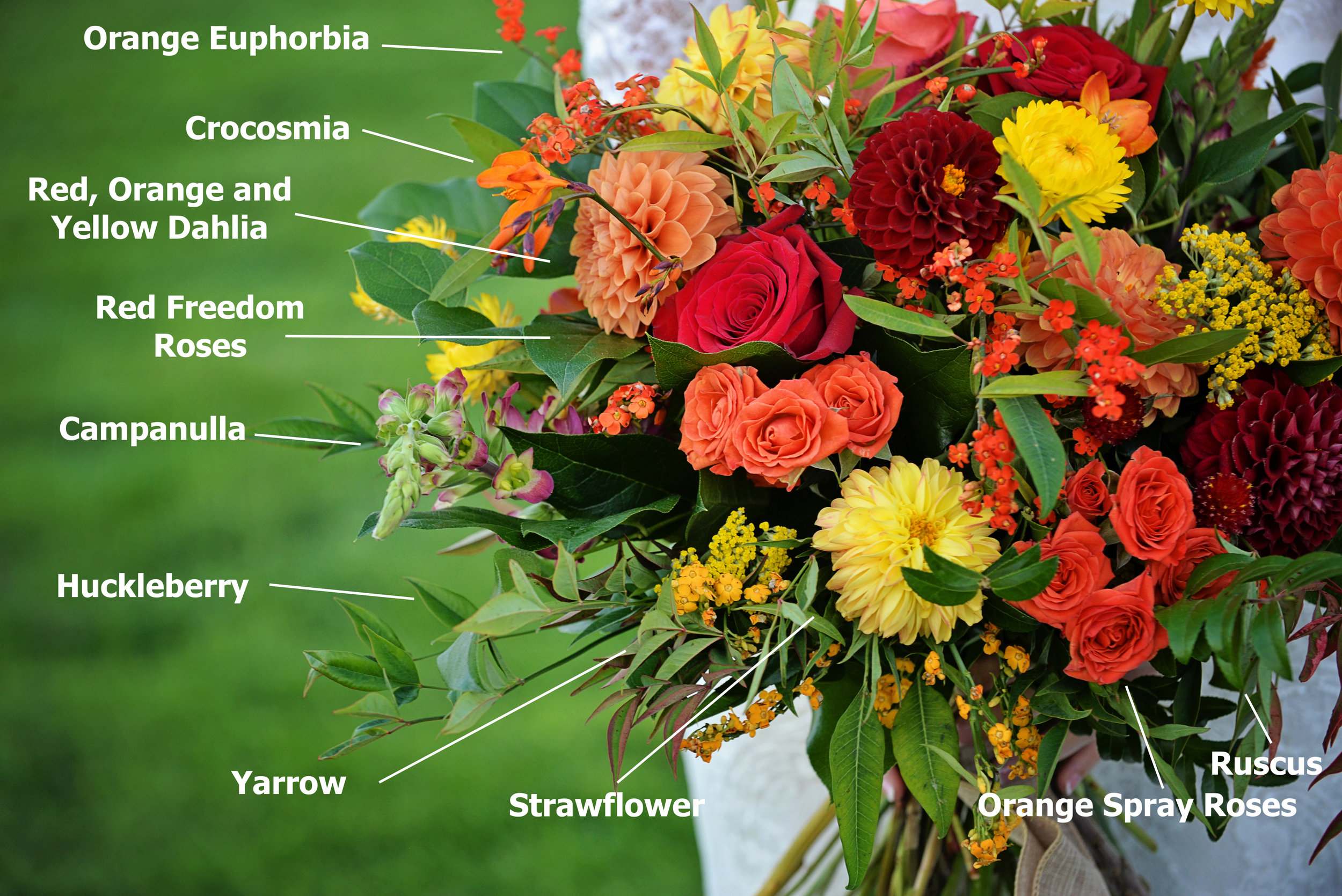 Some of the unique florals from Susie's bouquet.