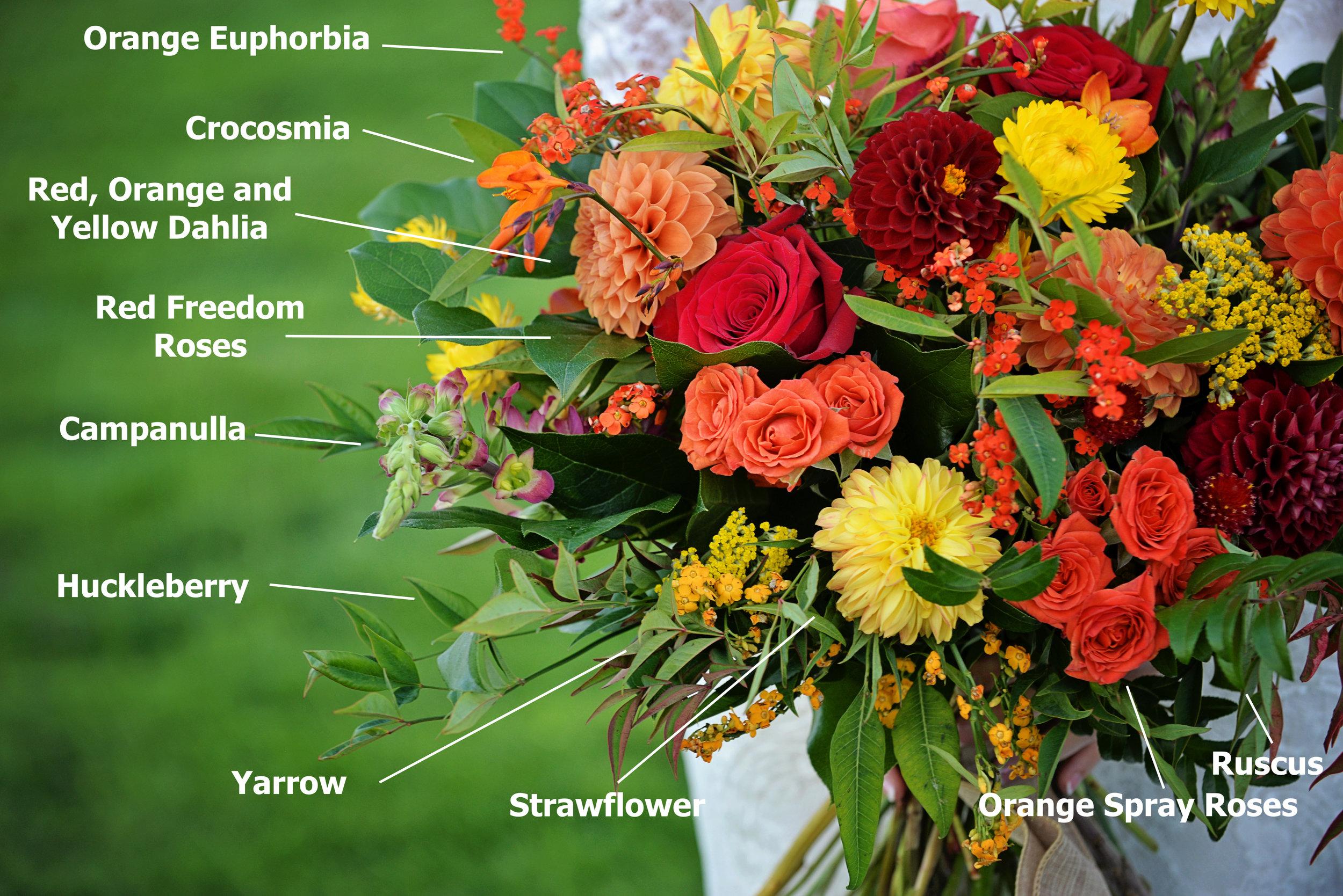 Susie-Jill-Bridal-bouquet-close.JPG