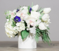 J. Morris Flowers  Winter Collection