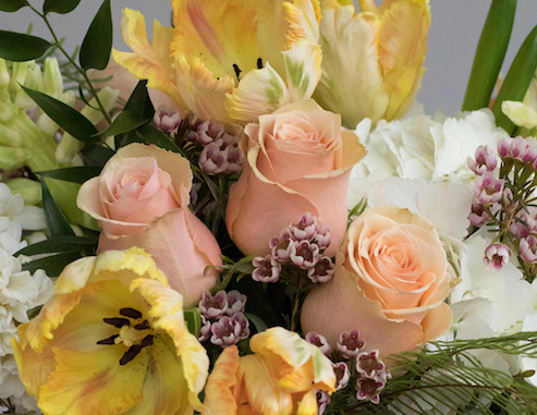 "Roses and Parrot Tulips hint at ""Living Coral"" in this J. Morris Flowers every day floral design for Spring."