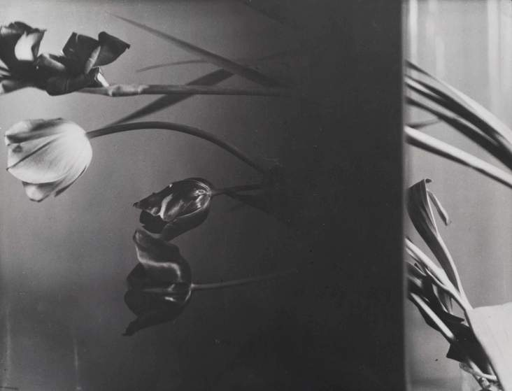 Composition with still life , 1931.