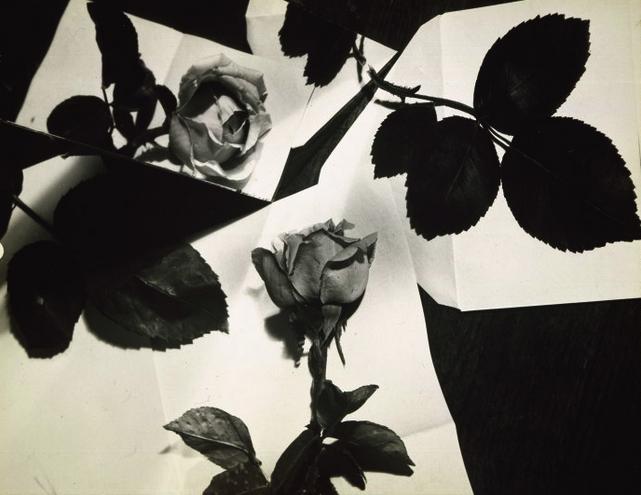 Composition Nature Morte(Still-Life Composition) , circa 1931.