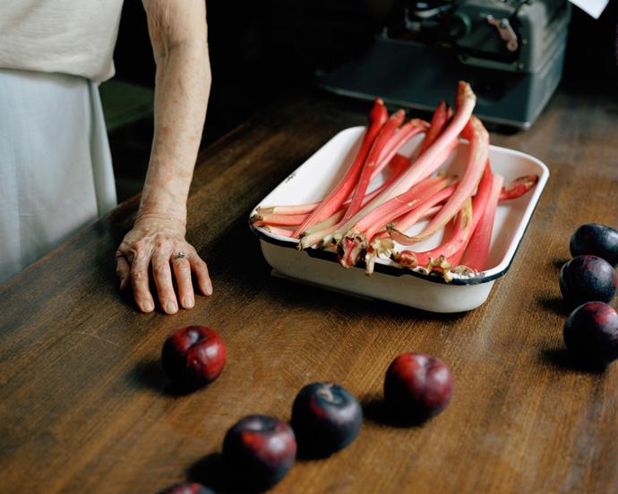 susan-worsham-margarets-rhubarb.jpg