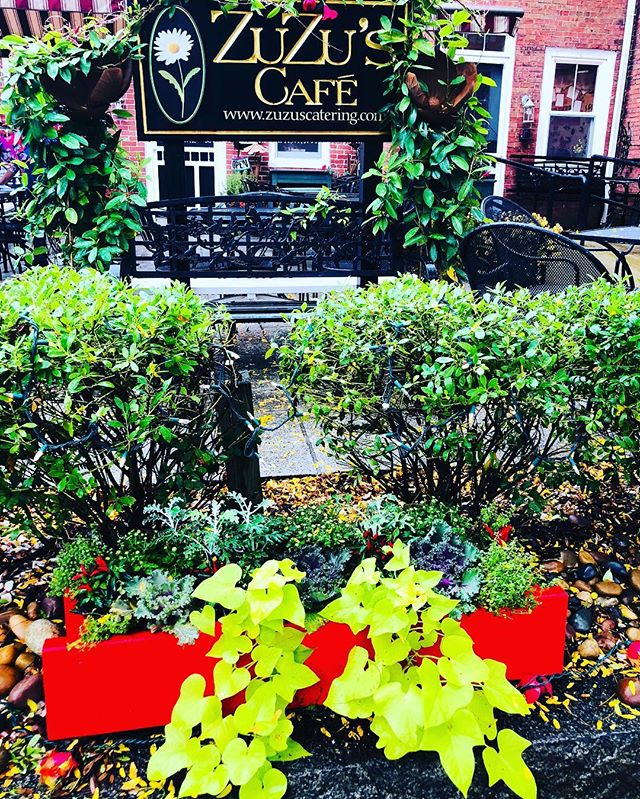 """Came to work on this dreary morning to find my planters """"refreshed"""" for fall.  Thanks @mebebeebe !!! Just the surprise we needed to brighten this day!  They look amazing #bestsisterever #fallflowers #rainraingoaway"""
