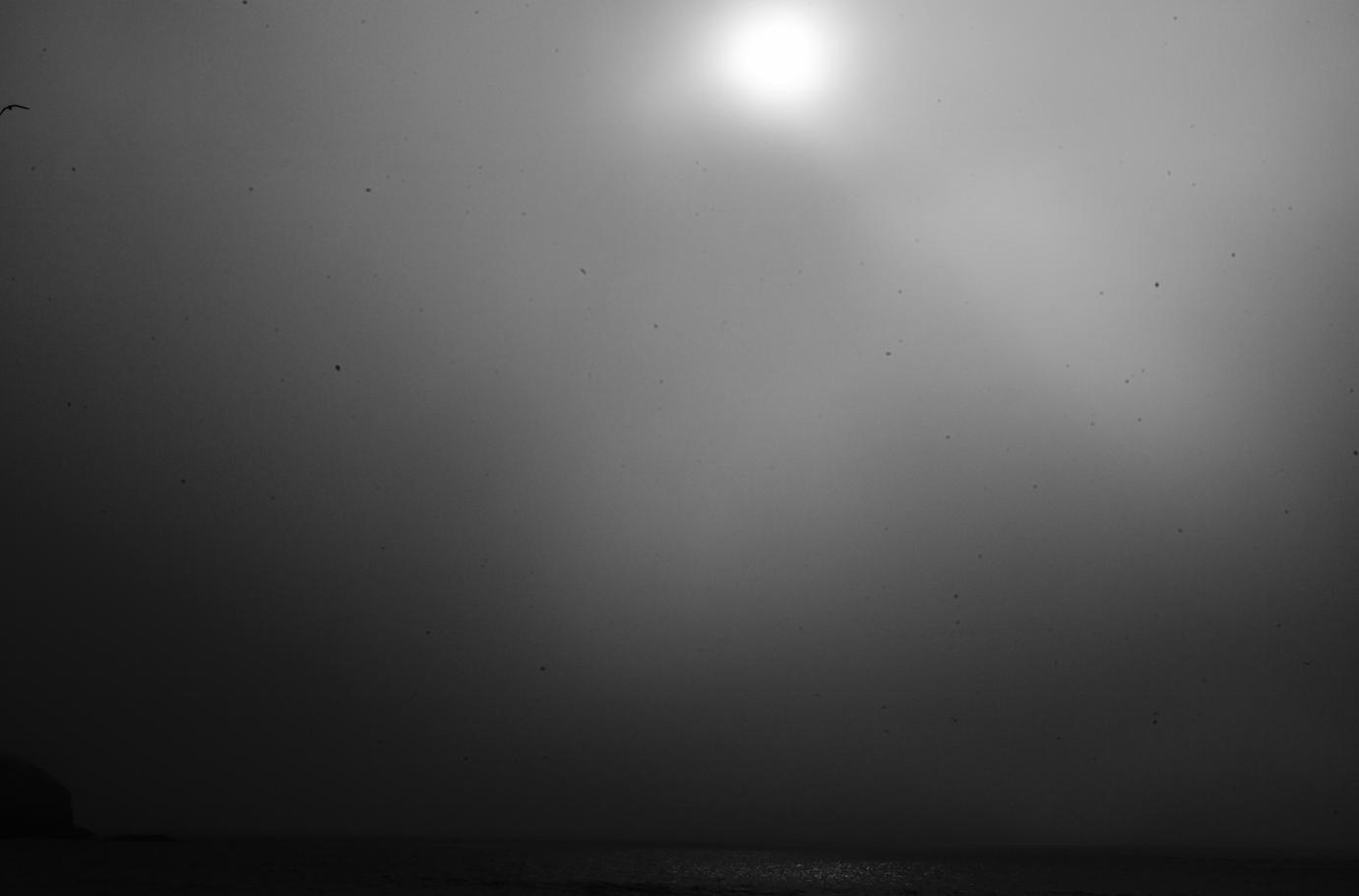 Screen Shot 2014-11-23 at 6.20.22 PM.png