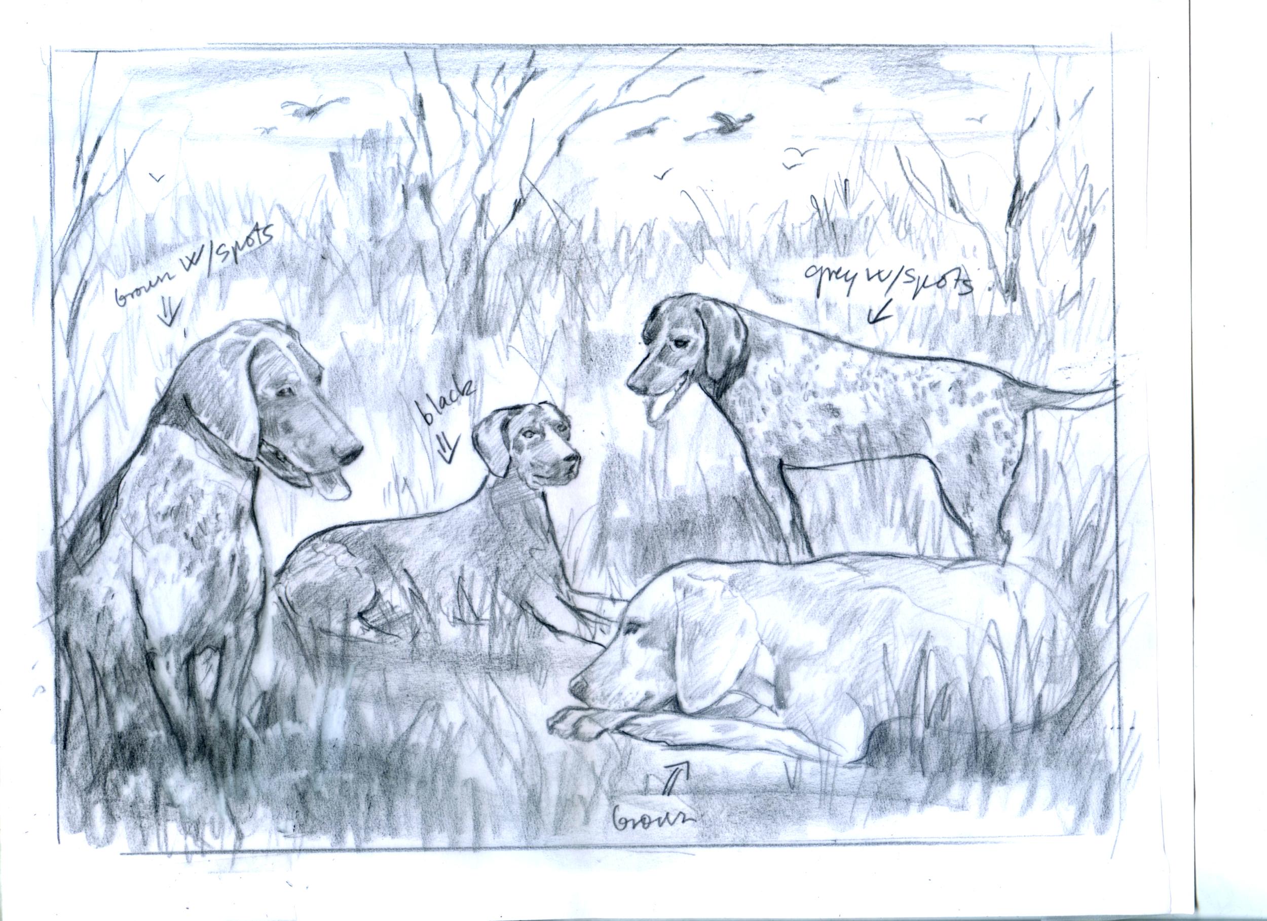 Dogs-sketch- for Cheryl-.jpg