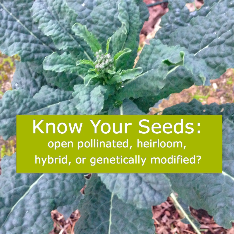 know_your_seeds.jpg