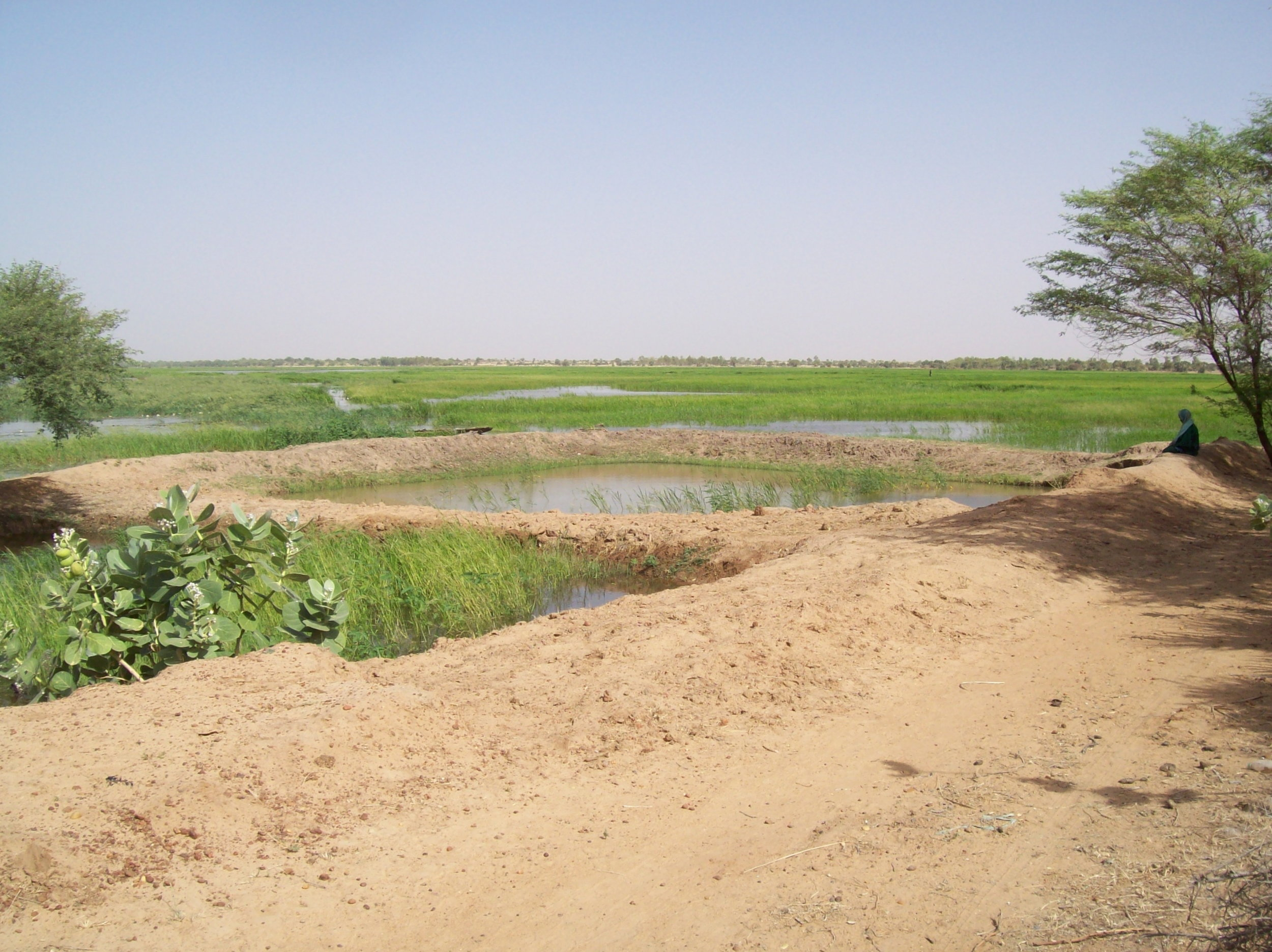 Fish farm in Goura, Mali.jpg