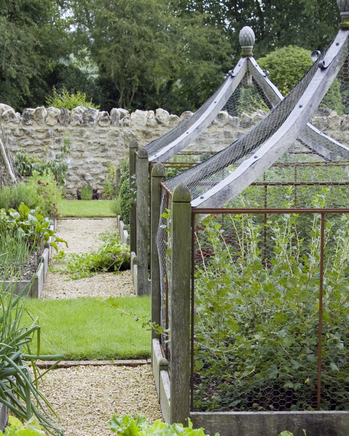 raised beds and plant protection.jpg