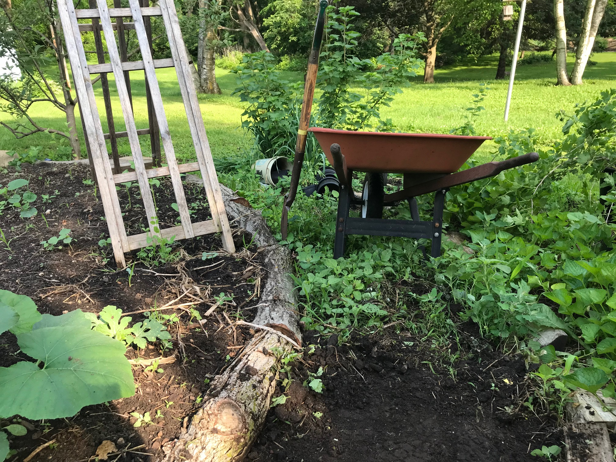 10 Examples Of Edible Gardens That Will Inspire You Daily Harvest Designs Llc