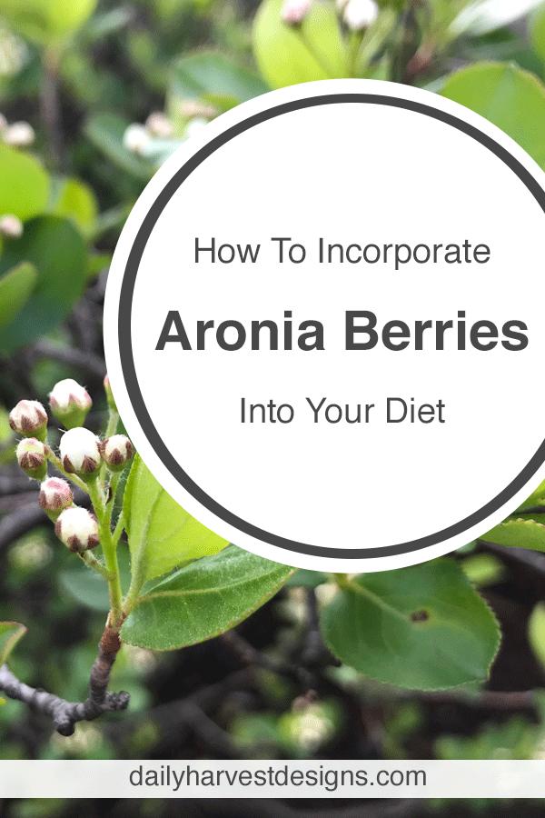 pinterest-aronia-berries.png