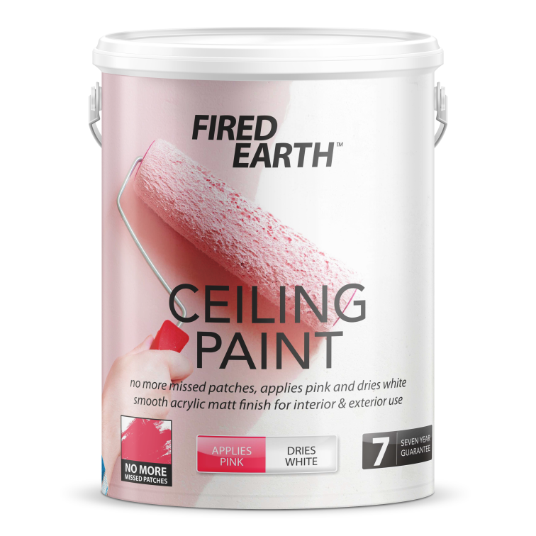 Ceiling Paint.png