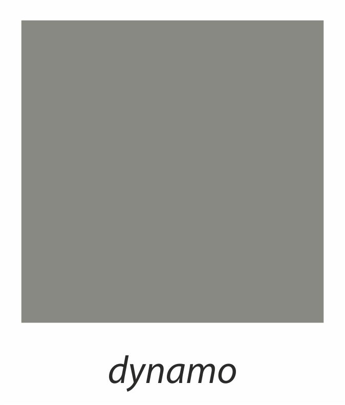 6. dynamo.jpg