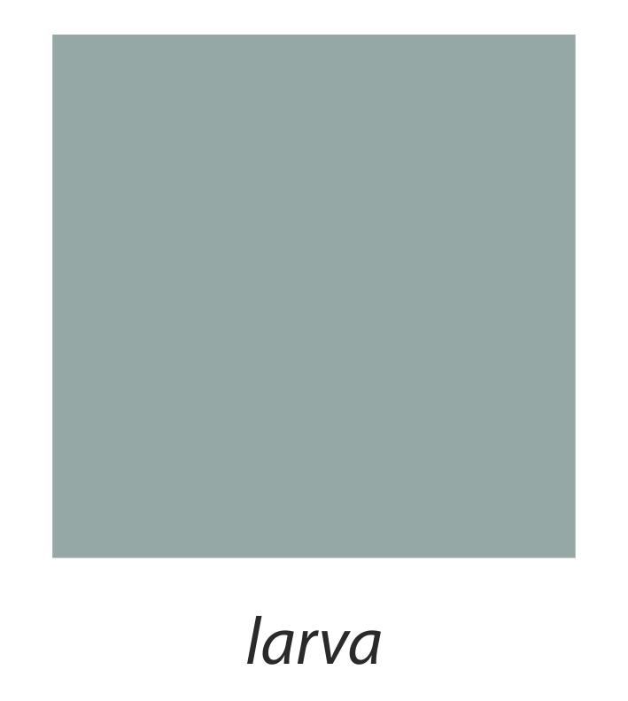 11. Larva.jpg