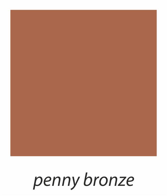 6. penny bronze.jpg