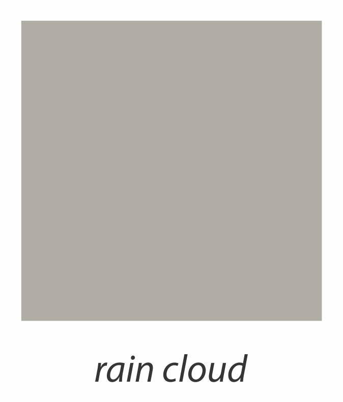 4. rain cloud.jpg