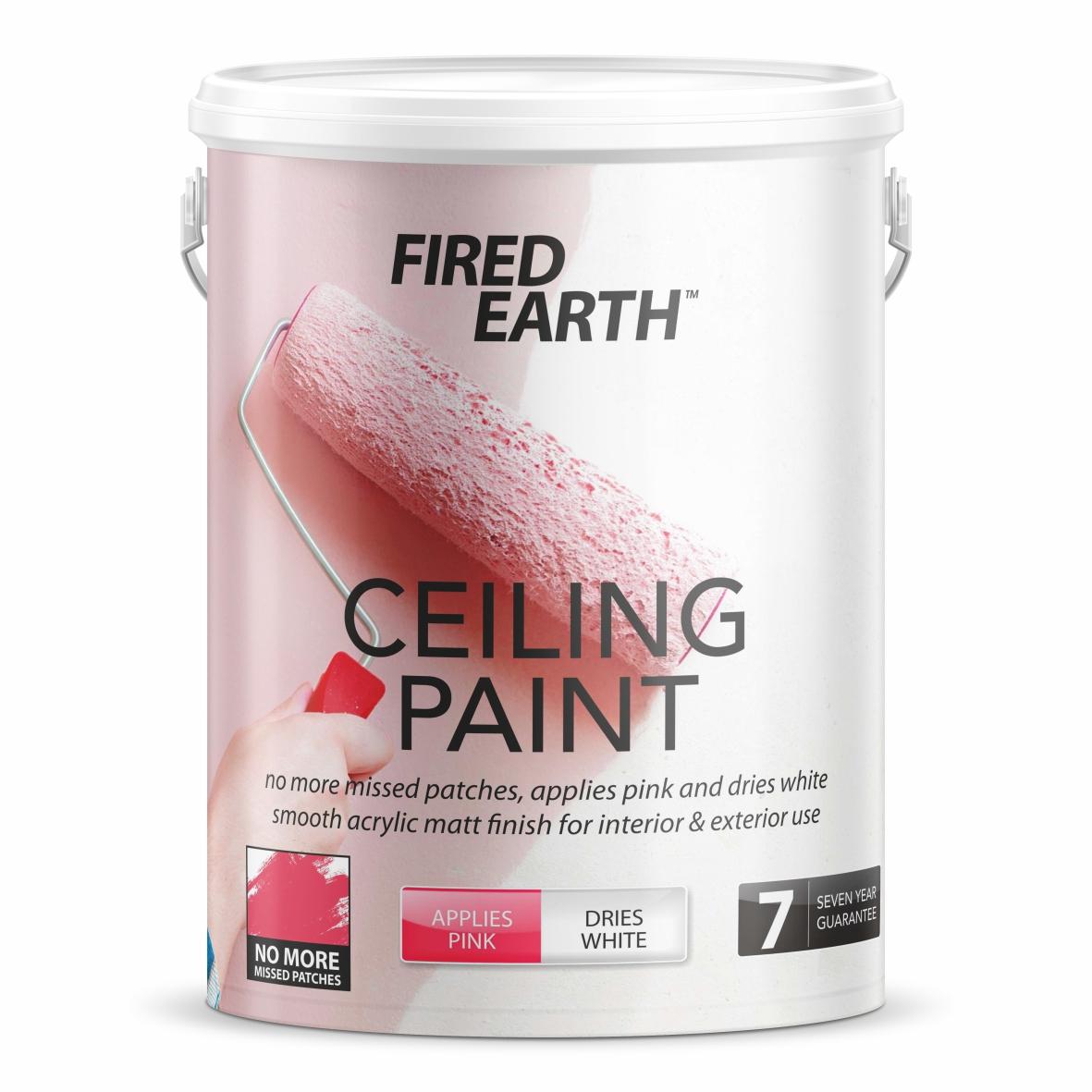 FE Ceiling Paint.jpg