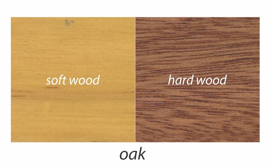 2. oak.jpg