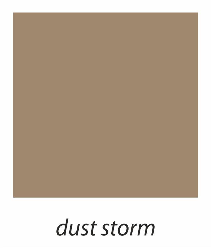 8. dust storm.jpg