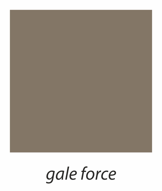 15. gale force.jpg