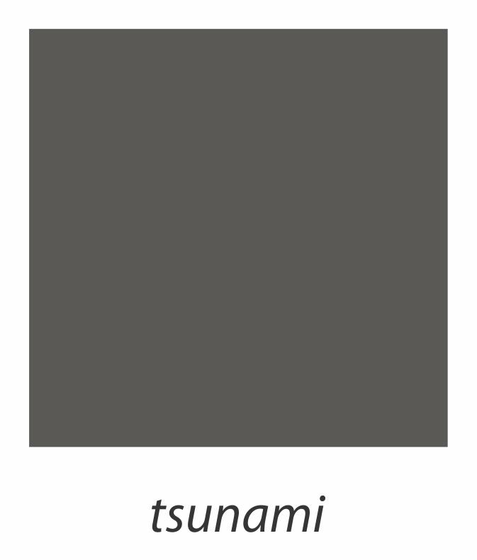 22. tsunami.jpg