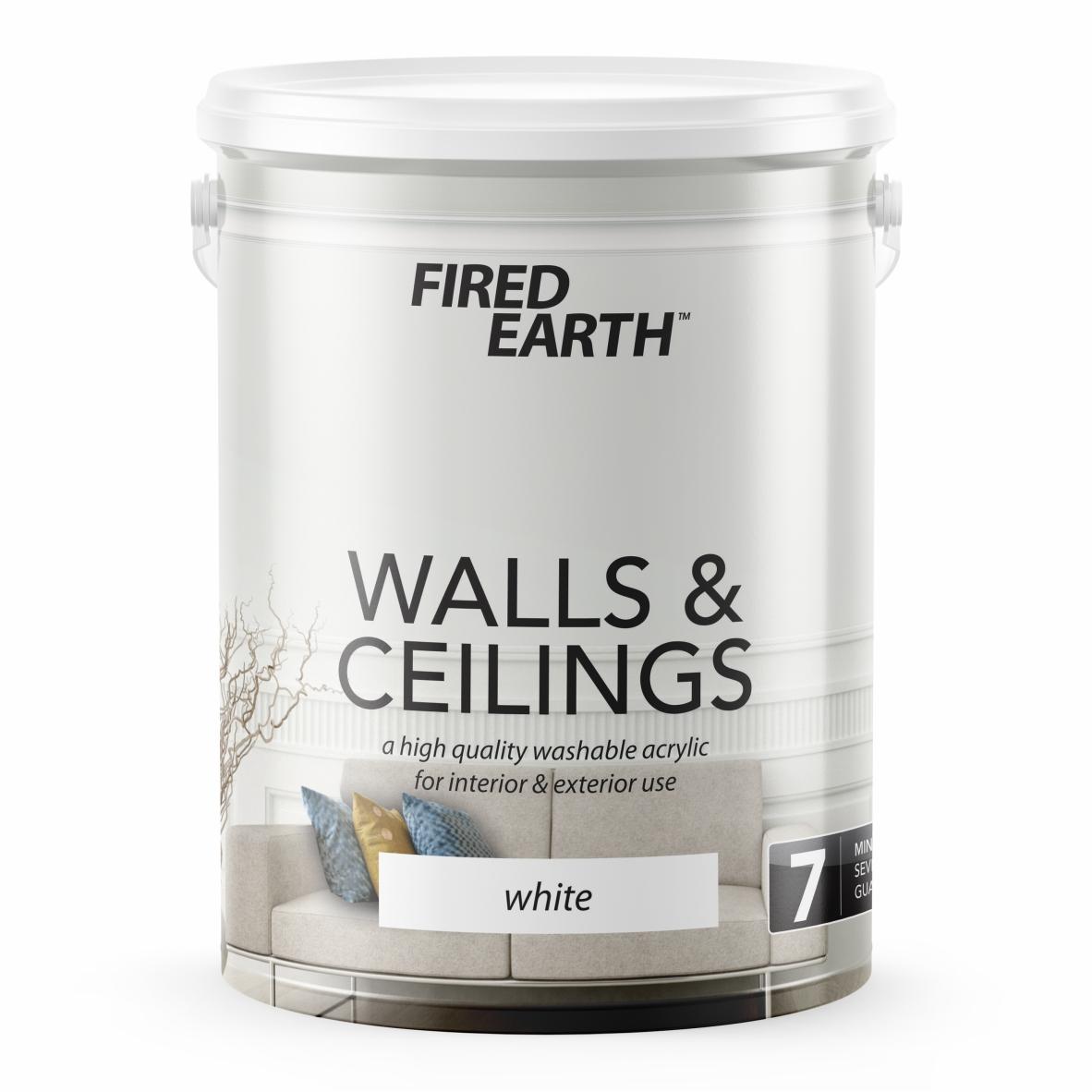 FE Walls & Ceilings.jpg