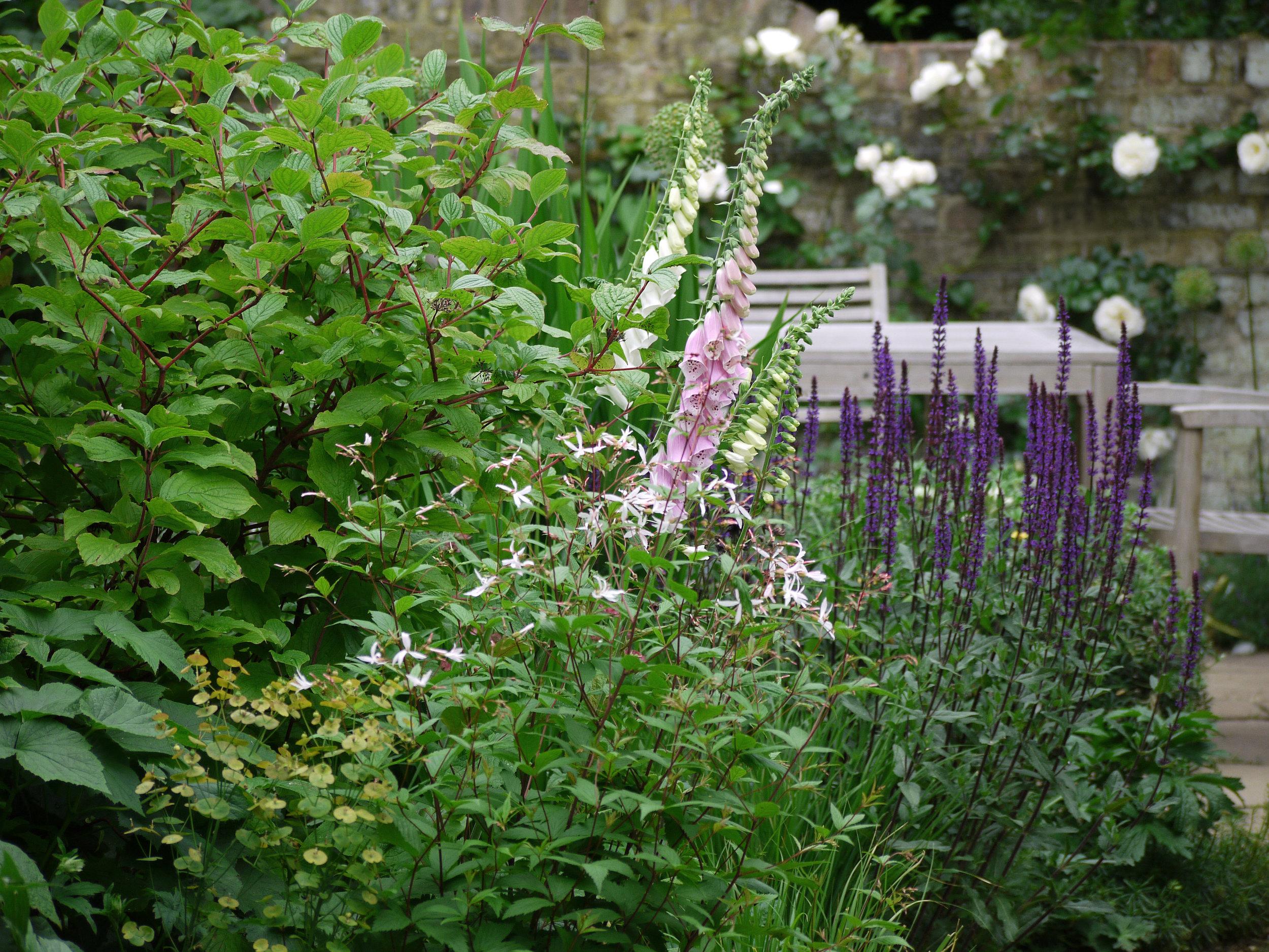 Iris Treinies-Gartendesign-PLG7