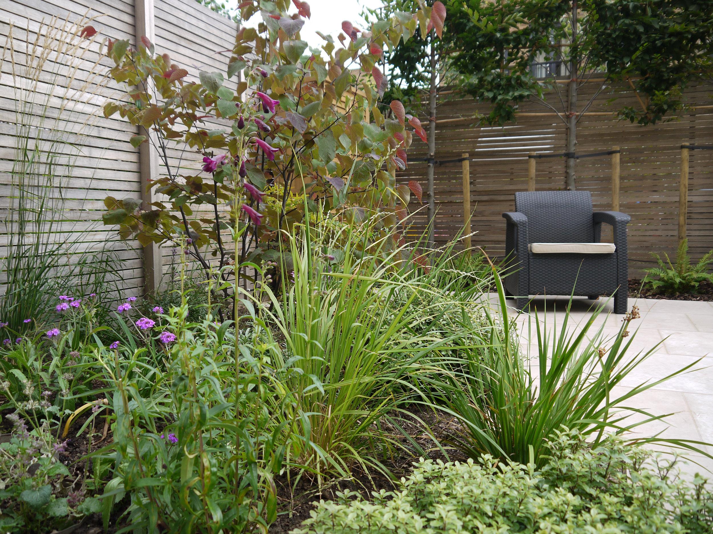 Iris Treinies-Gartendesign-CG1.jpg